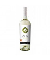 SANTA DIGNA Reserva Sauvignon Blanc