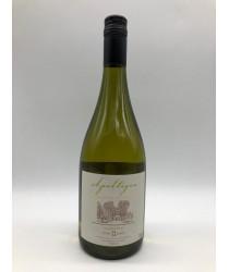 APALTAGUA RESERVA Especial Chardonnay