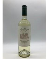 APALTAGUA RESERVA Especial Sauvignon Blanc