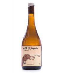 Cão Perdigueiro Riesling Renano